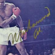 Muhammad-Ali-Signed-Over-Liston-8×10-Photo-Giant-Gold-Sig-JSA–ALIMPHS008015~PRODUCT_02–IMG_1200–1096364588